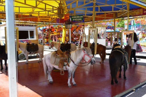 Mijas pony carousels spark global merry go round