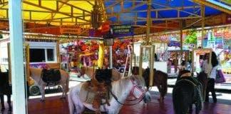 pony carousel CMYK e