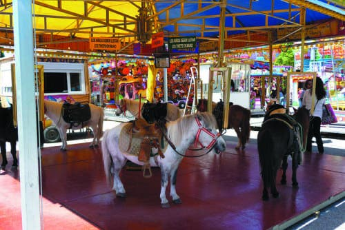 Mijas bans pony carousel after 65,000-strong petition