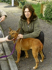 Kim's rescue centre - Kim looking sour