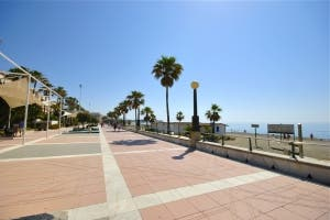estepona path