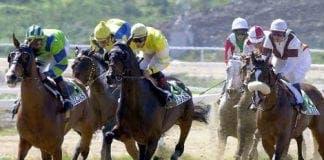 mijas racecourse