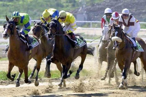 Mijas racecourse to get back up and running