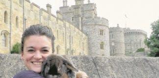rabbit comes home e