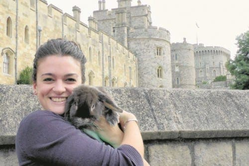 Homecoming rabbit travels from Malaga to Windsor for charity