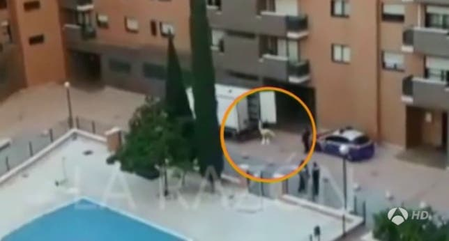 UPDATE: Spanish Ebola health worker sheds protective suit in Madrid street putting neighbours at risk