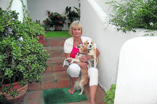 Expat pensioner complains of being 'singled out' over Estepona extension