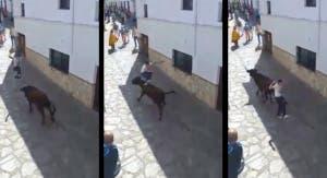 el-gastor-bull-leaping