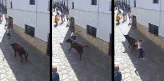 el gastor bull leaping