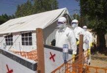 Ebola mali e