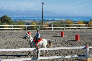 Hipica riding school is set to be siezed