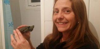 Turtle and Anna e