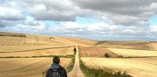 SHORT Camino walker e
