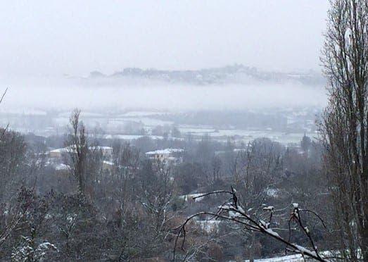 ronda snow IMG e