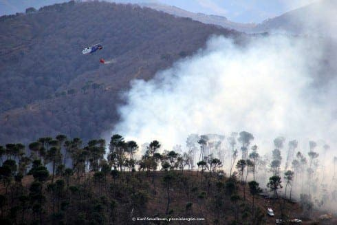 Emergency services declare Igualeja forest fire 'stabilised'. Photograph: Karl Smallman