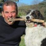 Eddie - The Hotel Dog