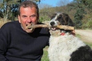Eddie the hotel dog