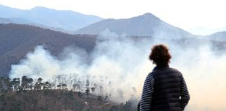 igualeja forest fire