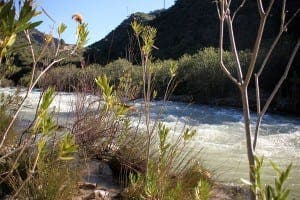 The Guadiaro river between Garganta de las Buitreras and El Comenar. Photograph: Karl Smallman