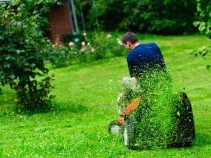 A sit-on lawnmower