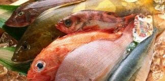 Seafood e