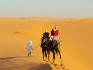 climate change morocco desert