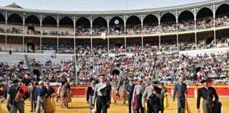 granada bullfight