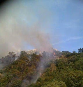 WILD FIRE: In Istan