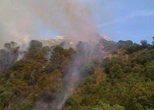 WILD FIRE: In Istan