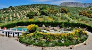 La Presa Pool Garden