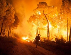 Forest fires rip through  Spain