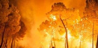ap spain wildfire dm  wblog