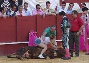 Ruiz comforts the bull