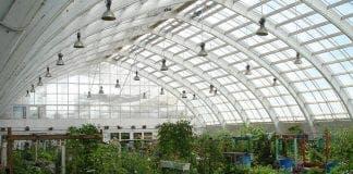 heatstroke greenhouse e