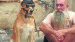 Dog abuse malaga