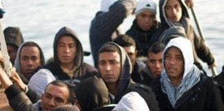 Migrants e
