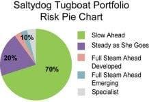 salty dog Risk Pie Chart