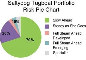 salty-dog-Risk-Pie-Chart