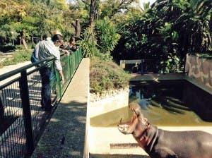 Jerez Zoo