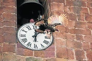 Turkey thrown from tower in Jaen