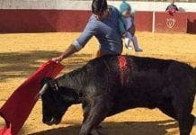 bullfight with baby