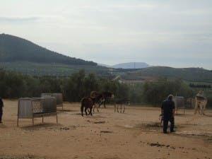 The refugio is north of Malaga city