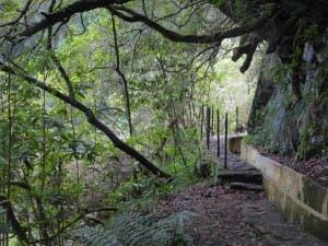 IDYLLIC: Long and winding road to Levada
