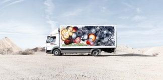 Truck art  e