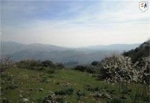 Inland andalucia
