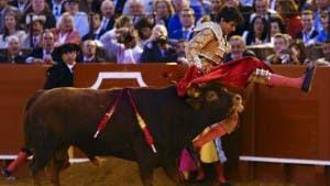 bull in backside 2