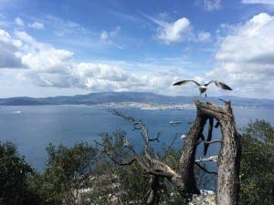 GLOBAL HUB: Gibraltar is going from strength to strength