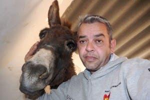 peter donkey