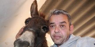peter donkey e