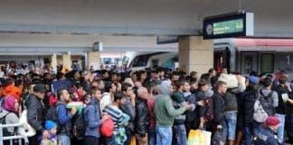 asylum seekers e